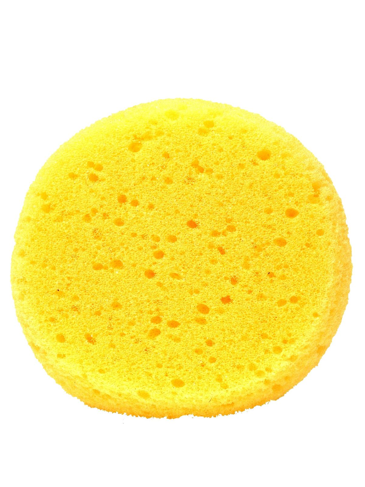 Synthetic Sponge