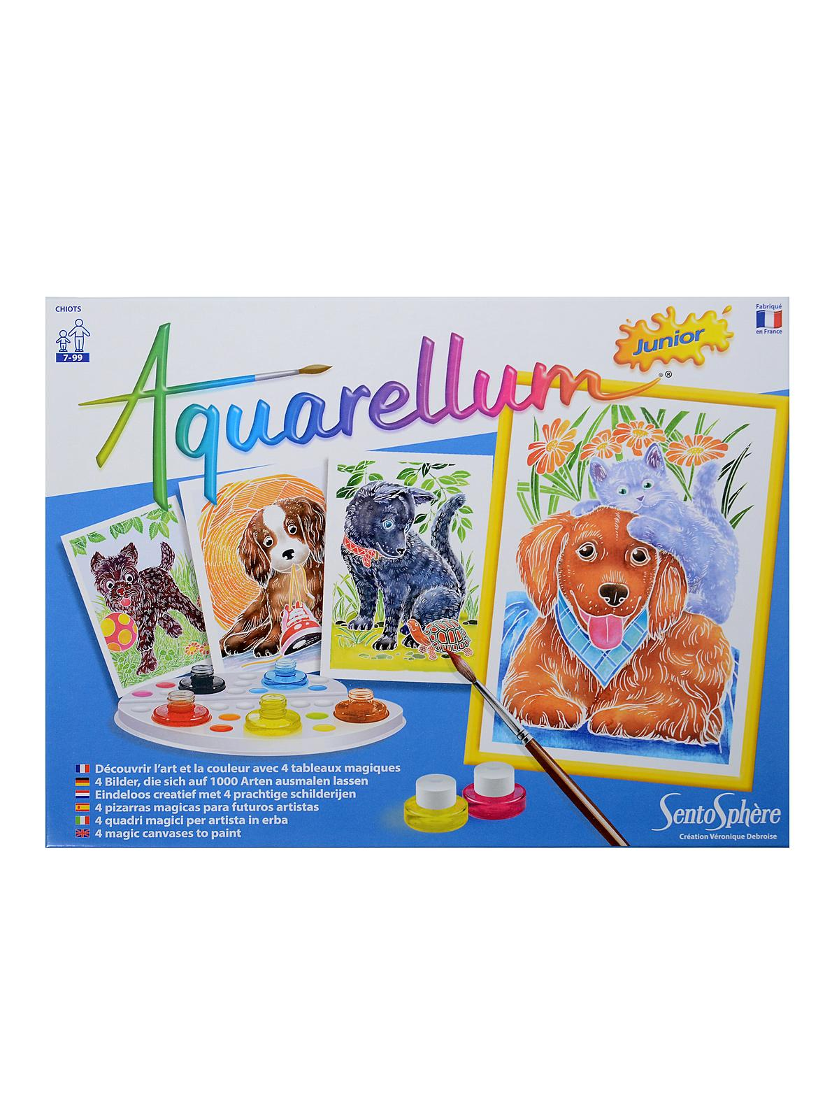 Aquarellum Junior Sets