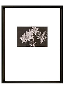 Gallery Collection Frames