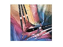 Susan Louise Moyer Silk Painting Brush Sets