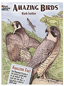 Amazing Birds Coloring Book