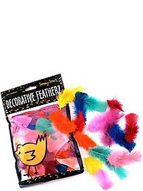 Decorative Featherz