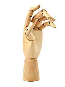 Wood Hand Manikins adult female left hand