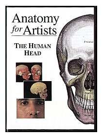 Anatomy for Artists: The Human Head -- DVD