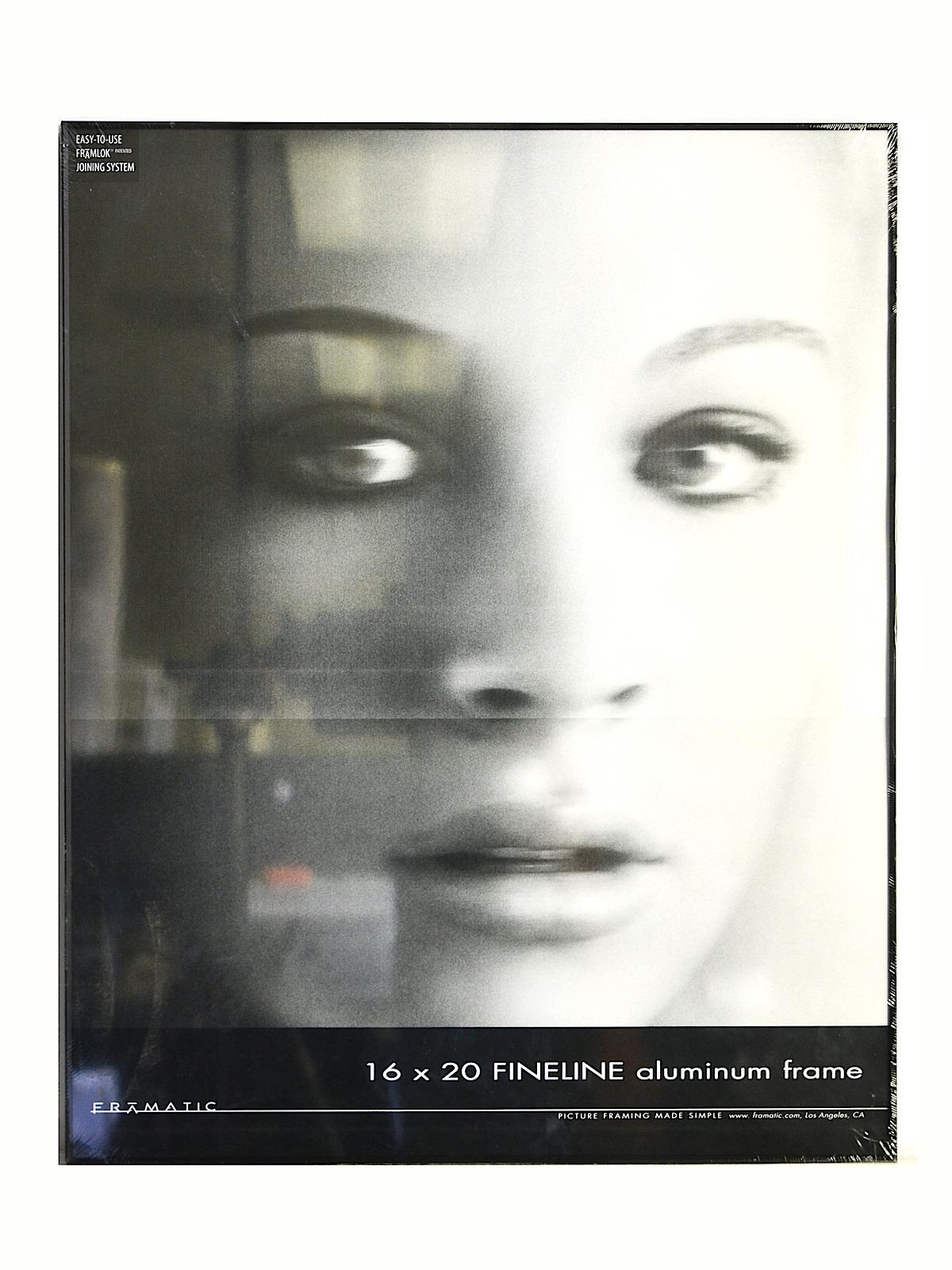 Framatic Fineline Aluminum Frames | MisterArt.com
