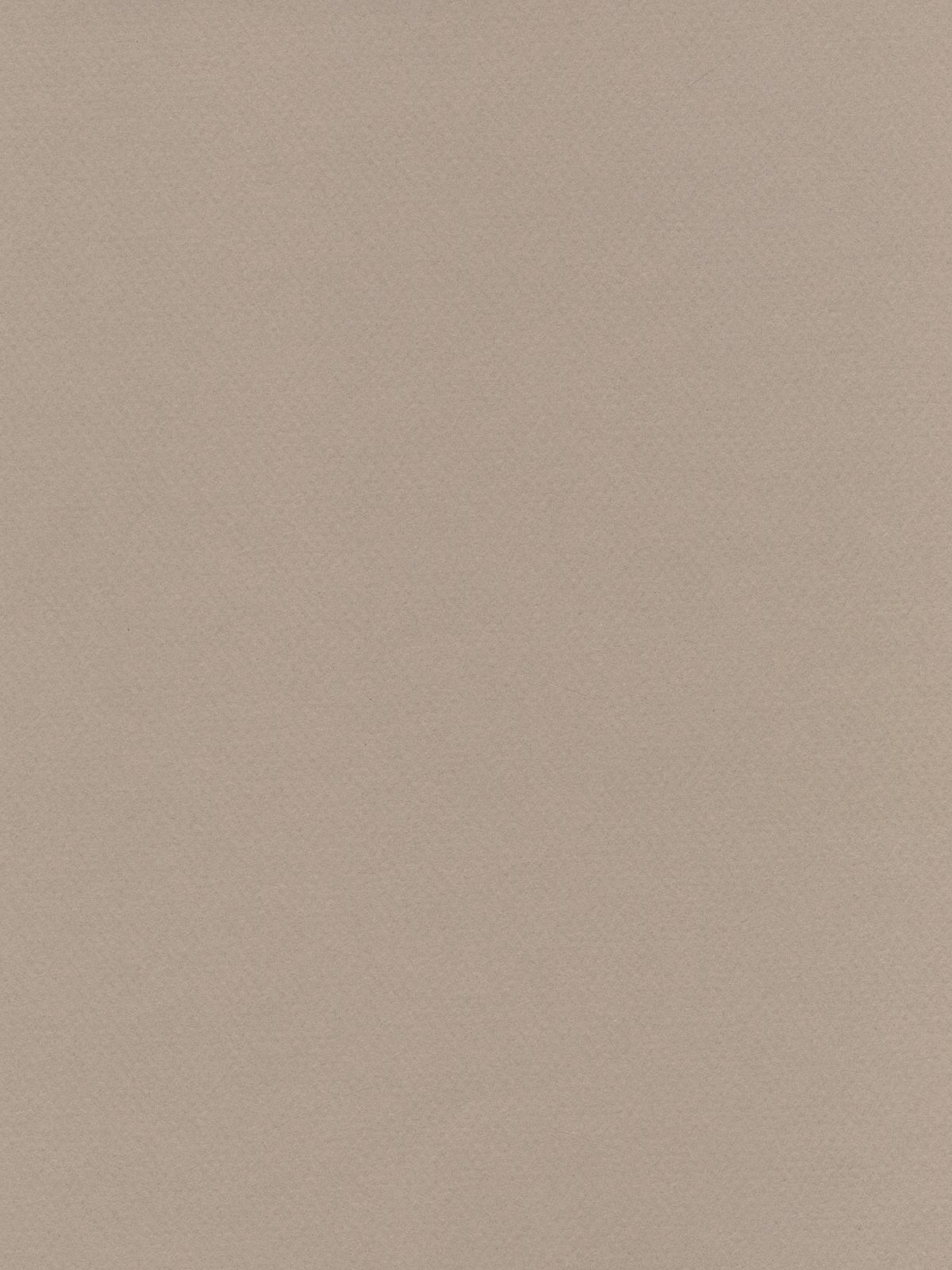 Mi-teintes Tinted Paper Pearl 8.5 In. X 11 In.