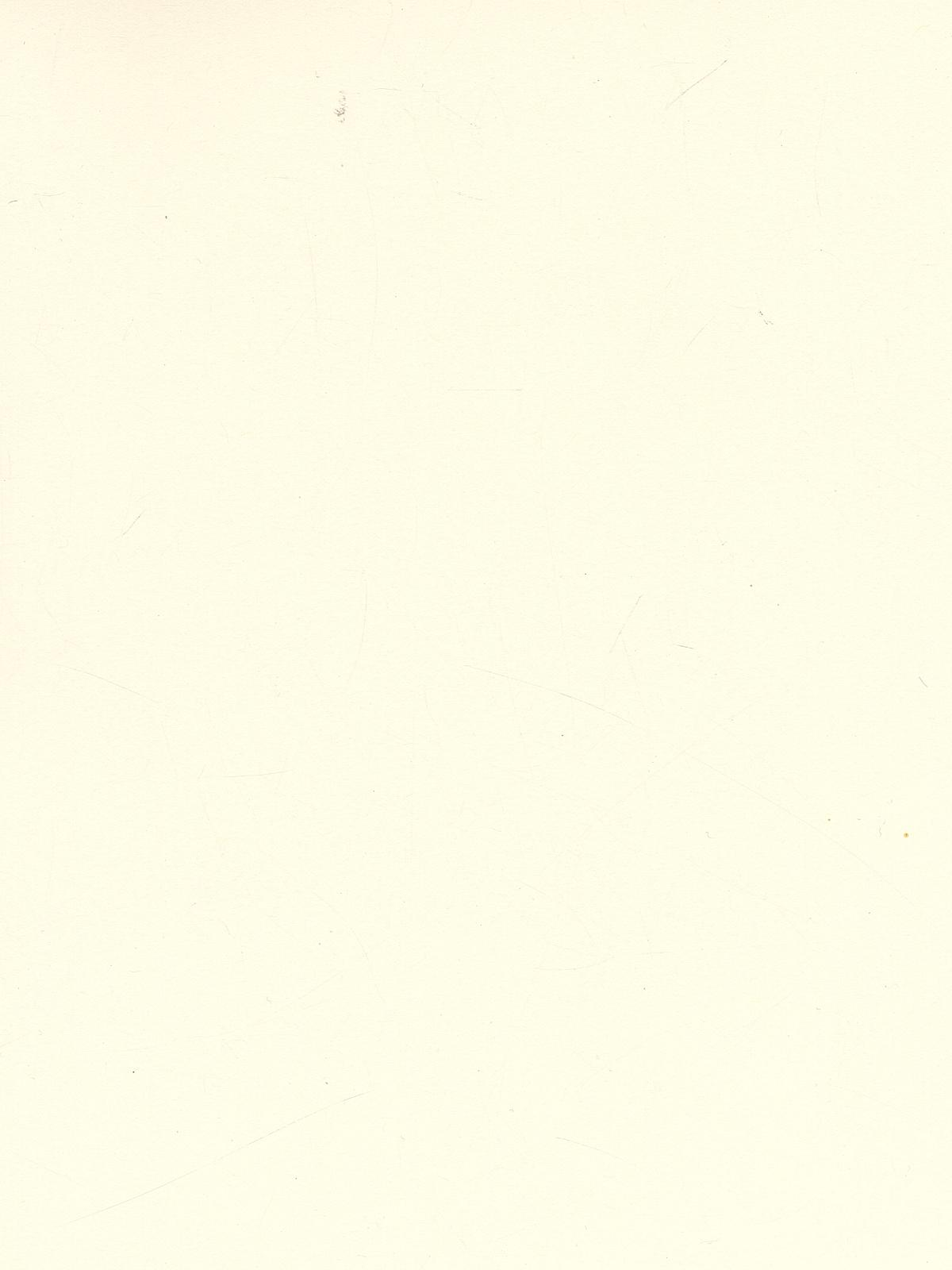 Classic Cardstock 8 1 2 In. X 11 In. Natural Sheet