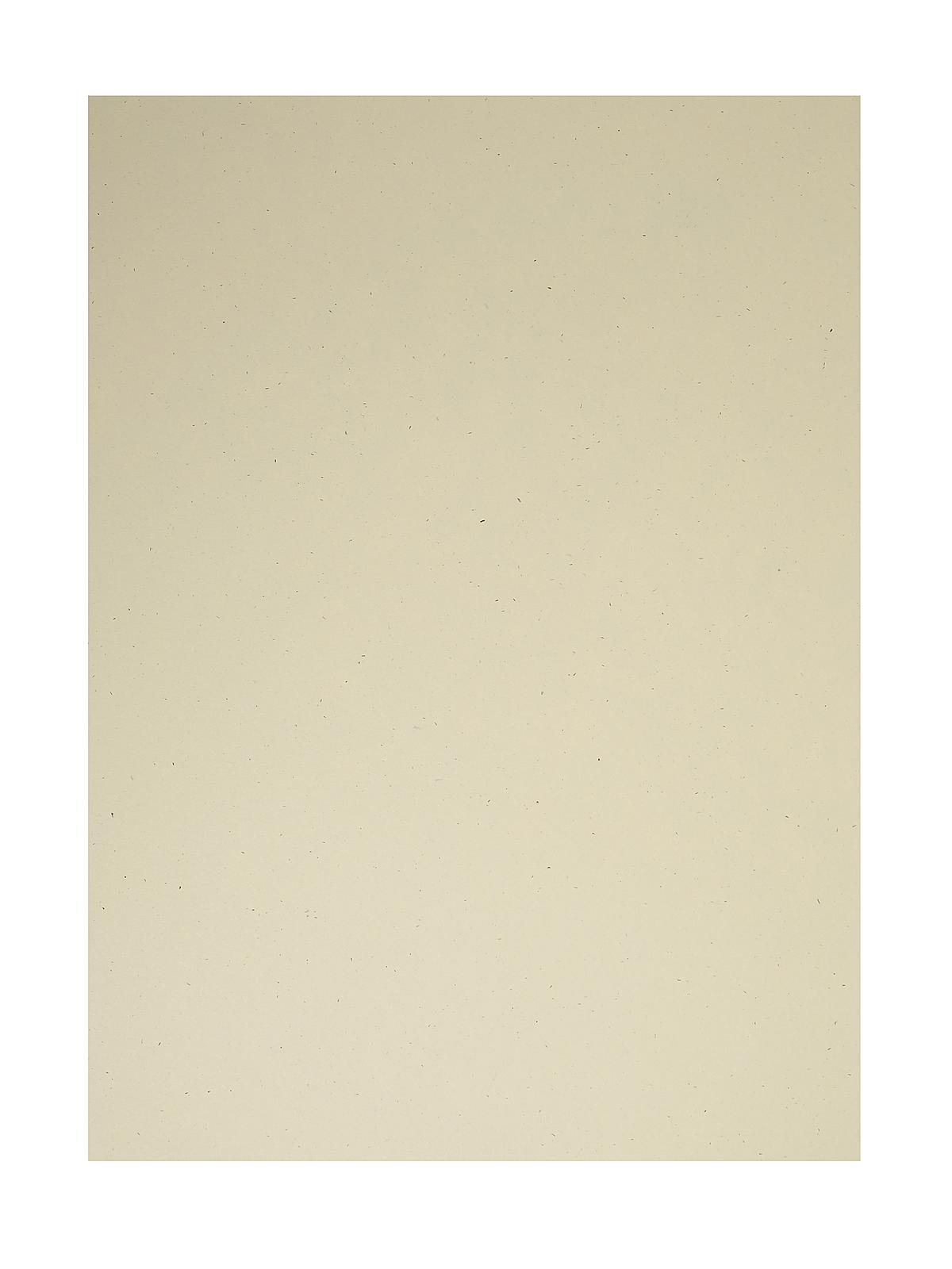 Classic Cardstock 8 1 2 In. X 11 In. Sawdust Sheet